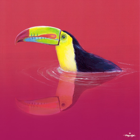 thejudge-animoreflecto_TOUCAN