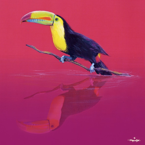 thejudge-animoreflecto_TOUCAN2