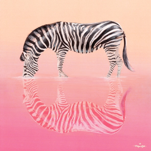thejudge-animoreflecto_ZEBRA